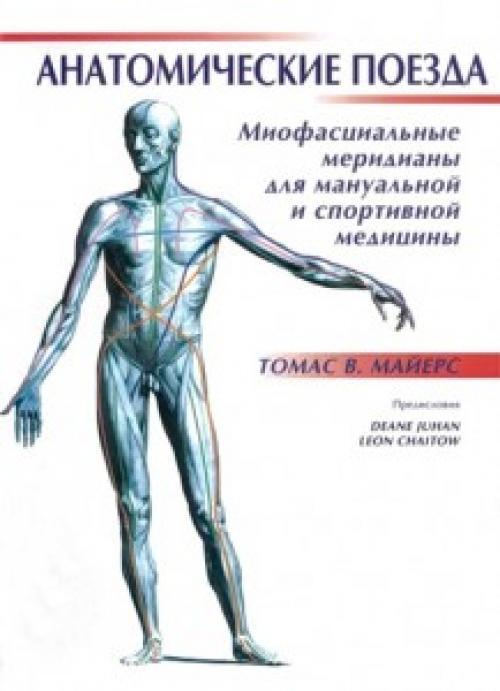 Миофасциальные поезда. Книга. Анатомические поезда. Миофасциальные меридианы для мануальной и спортивной медицины. Томас В. Майерс