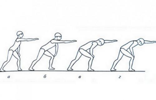 Упражнения для сухого плавания. Выполнение на суше