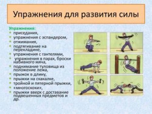 Упражнения для взрывной силы. Развитие взрывной силы