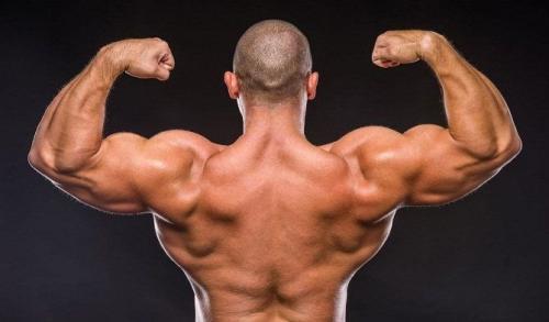 Мышцы-растут во время отдыха. Что нужно знать, чтобы расти