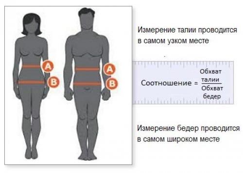 Ожирение причины. Абдоминальное ожирение. Жир на животе: причины, как устранить.