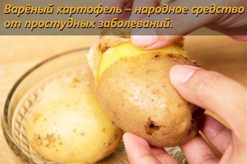 Сколько калорий в картофеле. Картофель варёный