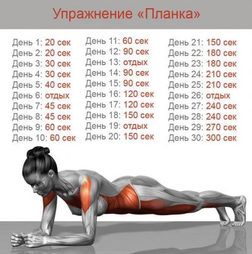 Планка для похудения для начинающих. Упражнение планка для начинающих