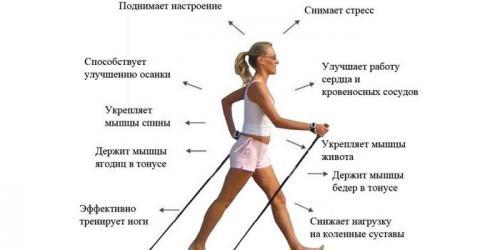 Потеря калорий при ходьбе. Расход калорий при ходьбе: таблица и калькулятор расчета