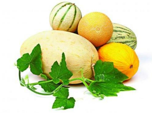 Сколько калорий в дыне колхознице. Калорийность фрукта и его использование в диетах