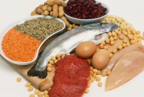Продукты богатые белками список. Самые белковые продукты: в каких продуктах очень много белка?