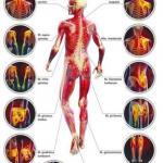 """Почему болят мышцы и как различить """"Хорошую"""" и """"плохую"""" боль?"""