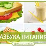 Азбука питания.  1. еда нужна для жизни.
