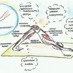Йога и мышцы.