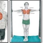 Упражнения на растяжку или расти мышца большая и очень большая.