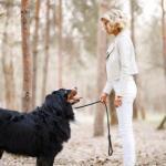 Как вам идея фитнес тура с собаками?