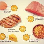 Какой самый лучший источник белка?