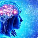 Тренировка для мозга?